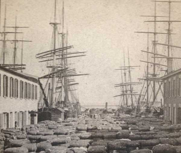 Bales of cotton on Adger's Wharf in 19th century.